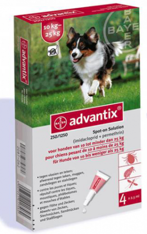 "אדוונטיקס לכלב 10-25 ק""ג"