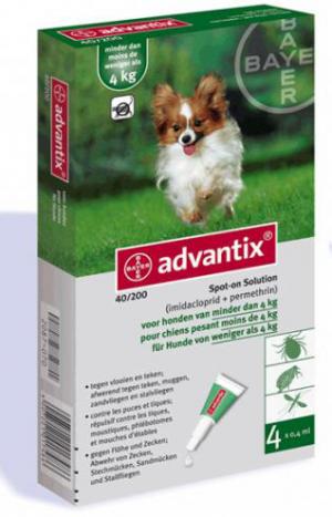 """אדוונטיקס לכלב עד 4 ק""""ג"""