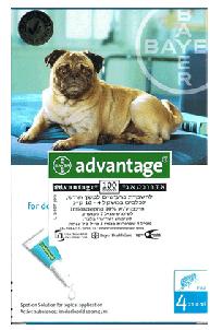 """אמפולות לעורף 4 יח´ לכלב בין 4-10 ק""""ג אדוונטאג´"""