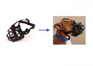 מחסום אילוף בצבע שחור לכלב מס 1 פטקס