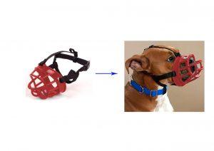 מחסום אילוף בצבע אדום לכלב מס 4 פטקס